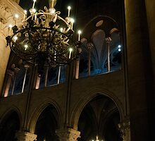 Notre Dame at Night by trulyshannon