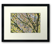 Psychedelic Nature Framed Print