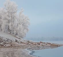 foggy winter landscape by mrivserg