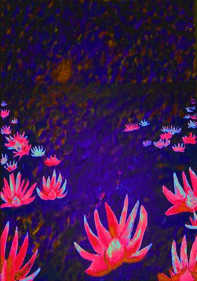 """""""Lotus Flowers at Sunset"""" by Kevin J Cooper"""