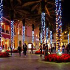 IT'S CHRISTMAS TIME! by FL-florida