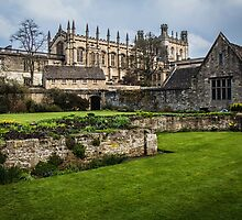 Garden at Christ Church, Oxford by Nicole Petegorsky