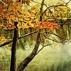 A Tranquil  Autumn Day by Anita Pollak