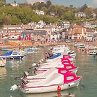 Boats in the harbiur at Lyme Regis Dorset UK by Pauline Tims