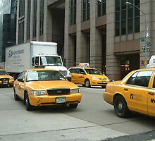 Taxi by Lesley White