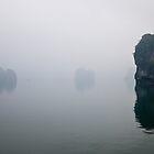 Ha long bay by luxquarta