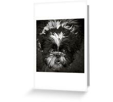 Shih-Tzu Says Woof! Woof! Greeting Card