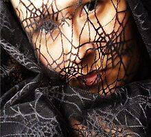 spiderweb by peyote