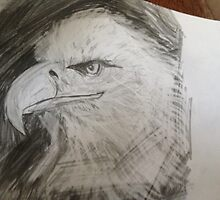 Eagle Head by Ryanchaudhry2