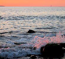 Pink Splash by betsyp