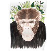 Charlie Chimp Poster