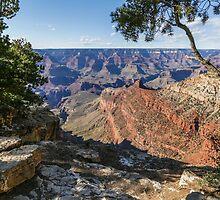 Grand Canyon #1 by Nadim Baki
