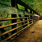 A long way to the other side of the bridge by Scott Mitchell