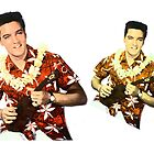 Elvis 60s in Hawaii. Digital photo art. King of Rock 'n' Roll. by naturematters