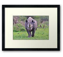 Black Rhino Bull - Powerful Me Framed Print