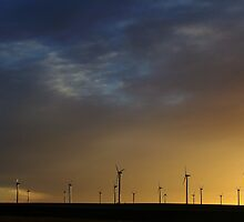 Last Light on The Llano Estacado Wind Farm by amandameans
