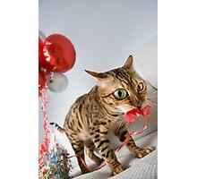 Helium Addict Photographic Print