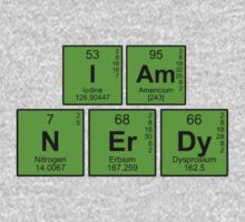 I am nerdy - written in periodic table elements by bakery