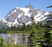 Mount Shuksan and Picture Lake in the Summer by Lynn Bawden