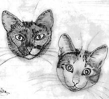 My pencil drawing of Lillan and Grenadine - all products by Dennis Melling