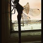 Rustic Dragon Fly by HippyDi