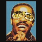 STEVIE WONDER: iWONDER by SOL  SKETCHES™