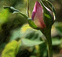 Rosebud In Colored Pencil ll by Julie's Camera Creations <><