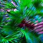 Palms by Genevieve  Brown