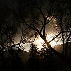 Mystical Colorado Sunset...Colorado Springs by dfrahm
