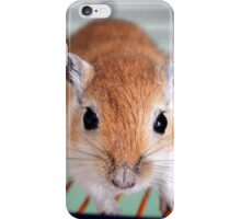 Gerbil 8 iPhone Case/Skin