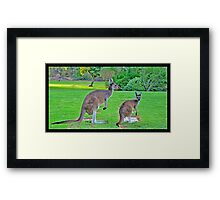 Life's Journey  Framed Print
