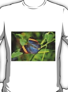 Indian Leaf Wing T-Shirt