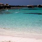 Salmon Bay, Rottnest Island,Western Australia by martinberry