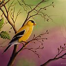 Goldfinch by Rich Summers