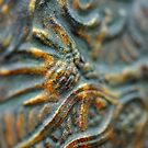 Patinated by Tiffany Dryburgh