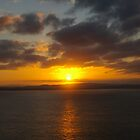 Montague Island Sunset by fcory