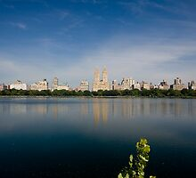 5th Avenue Skyline by MondoStef