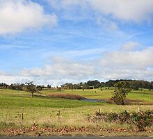 Australian Countryside, Cambewarra NSW  Australia landscape by Leah-Anne Thompson