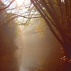 Morning mist on the Derwent by james78