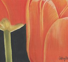 orange tulips by cathy savels
