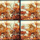 Tree Action Grid by tropicalsamuelv