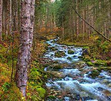 Cascades by PeterCseke