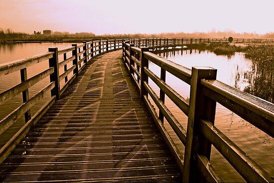 Boardwalk In Sepia by Ian Foss