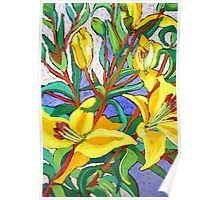 Yellow Lily Poster