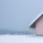 The Snow House by Angelika  Vogel