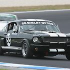 Ford Muscle by zoompix
