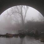 Rockville Fog by James Wheeler