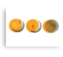 shifty orange  Canvas Print