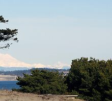 Point Wilson Lighthouse and Mount Baker by Lynn Bawden