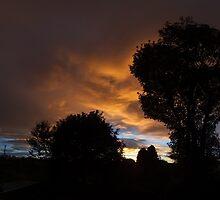 Sunset in Fenham by Alan Rodmell